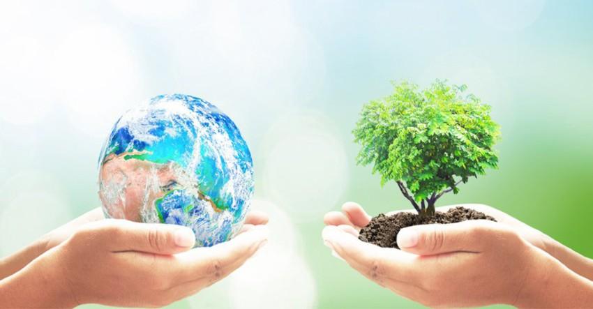 Comment reduire son impact environnemental