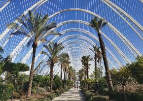 Visiter l'Umbracle lors de votre événement à Valence